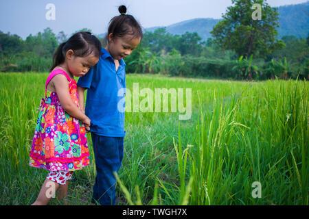 Cheveux longs garçon et petite fille jouant dans champ de riz. et une fille elle peur un terrain boueux. Galerie d'images haute résolution.