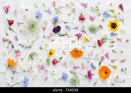 Fleurs d'été fleurs sur nappe blanche Banque D'Images