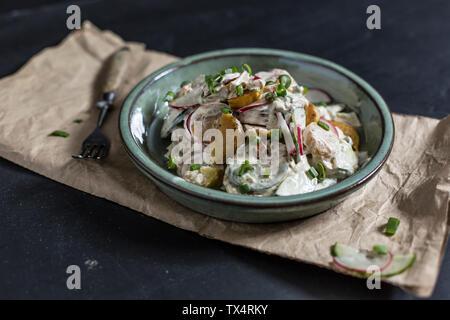 Bol de salade de pommes de terre frites avec le concombre, radis rouges, oignons de printemps et vinaigrette mayonnaise