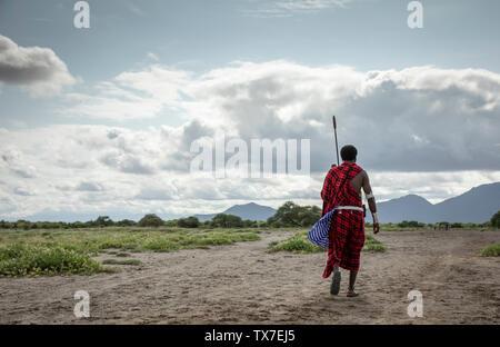 Homme masai walking in Savannah
