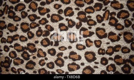 Leopard pattern design et tendance de fond de la fourrure naturelle, Fourrure Léopard transparente motif texture poilue réel. Fantaisie, tendance 2019. Design animal. Brown, ora Banque D'Images