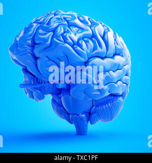 Rendu 3d illustration d'un cerveau bleu Banque D'Images