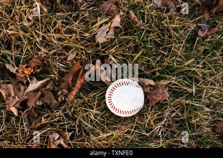 Balle de baseball sur l'herbe humide avec les feuilles d'automne, overhead view