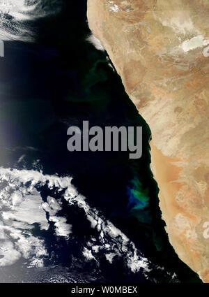 Feu vert et bleu les eaux au large de la Namibie au début de novembre 2007 comme une prolifération du phytoplancton a grandi et a disparu dans l'océan Atlantique. La floraison s'étend du nord au sud le long des centaines de kilomètres, même si elle est plus lumineuse dans le centre de cette image. Ces algues sont communes dans les eaux côtières au large du sud-ouest de l'Afrique où le froid, les courants riches en éléments nutritifs du balayage de l'Antarctique et interagir avec la plate-forme côtière. (Photo d'UPI/NASA)