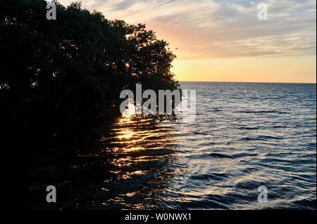 Les mangroves tropicales se découpant avec vaste Golfe du Mexique au coucher du soleil, à Pigeon Key, Florida Keys, Floride, USA Banque D'Images