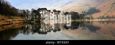 Brume sur la lande, Parc National de Lake District, Cumbria, England, UK