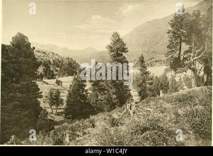 Image d'archive à partir de la page 522 de l'Arve die in der Schweiz