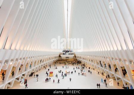 Oculus, World Trade Center Transportation Hub, Financial District, Manhattan, New York City, New York, États-Unis d'Amérique, Amérique du Nord