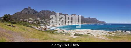 Vue panoramique sur la plage de Camps Bay à Cape Town, Afrique du Sud, avec l'herbe verte, lonaly arbre et les douze apôtres montagne dans l'arrière-plan. Banque D'Images