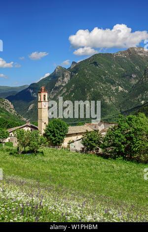 Pré alpin avec des fleurs avec alpine village en arrière-plan, le Val Maira, Alpes Cottiennes, Piémont, Italie Banque D'Images