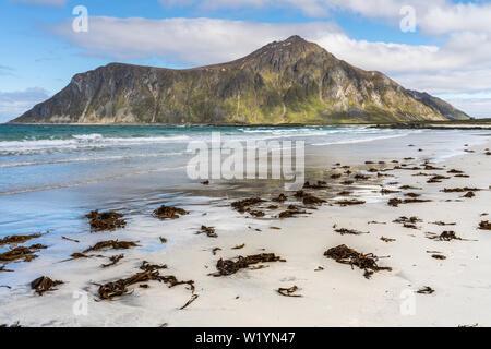 Flakstad plage, îles Lofoten, Norvège sur une belle journée de printemps avec motion blurred la mer d'azur et d'algues échouées sur la plage de sable Banque D'Images