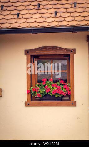 Vieille fenêtre en bois brun avec des fleurs background Banque D'Images