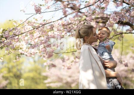 Jeune maman maman tenant son petit fils bébé garçon enfant sous les cerisiers SAKURA en fleurs à la chute des pétales de rose et de belles fleurs