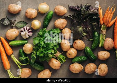 Les légumes crus frais de la nouvelle récolte, les pommes de terre, oignons, carottes, concombres, ail, basilic et persil sur un fond rustique foncé. Haut de la vue, télévision lay Banque D'Images