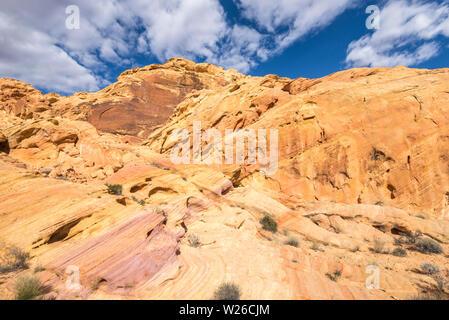 Formations rocheuses colorées sur le Rainbow Vista trail. Vallée de Feu Park, Nevada, USA.