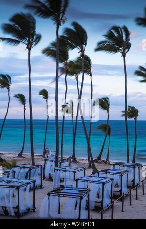 République dominicaine, Punta Cana, Playa Cabeza de Toro, des chaises longues au Dreams Palm Beach Resort Banque D'Images