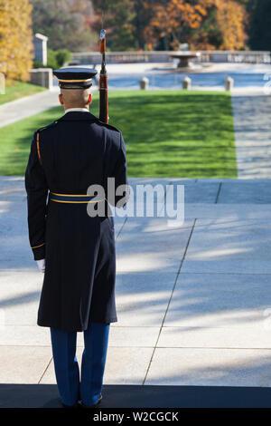 USA, Virginie, Arlington, Arlington National Cemetery, Tombe du soldat inconnu,-SENTRY Banque D'Images