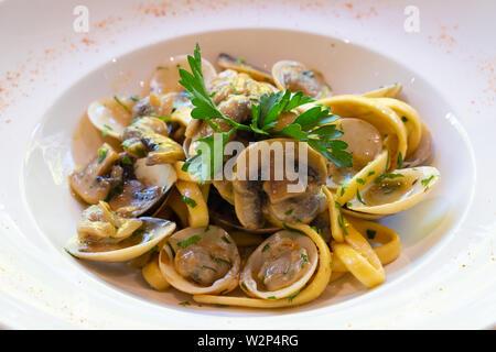 Close up de palourdes et les champignons tagliatelle tagliolini faits maison italienne pâtes nouilles oeufs Fruits de mer en persillade ail fraîche huile d'olive exta virigin iso Banque D'Images