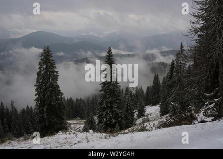 Début de l'hiver, région brauneck, brauneck, lenggries, benediktenwand, isarwinkel, région de la Haute-Bavière, Alpes bavaroises, la Bavière, la vallée de l'Isar, Allemagne Banque D'Images