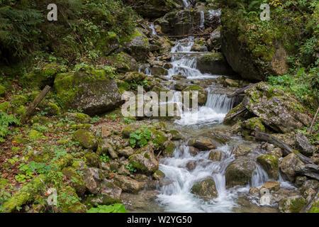 Ruisseau de montagne, vallée de fischerbach, brauneck, isarwinkel, région de la Haute-Bavière, Alpes bavaroises, la Bavière, la vallée de l'Isar, Allemagne Banque D'Images