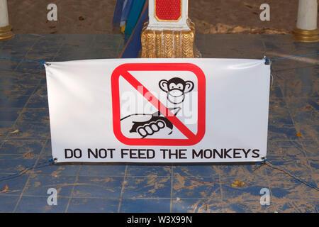 Inscrivez-vous de ne pas nourrir les singes dans Krabi Thailande