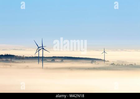 Éoliennes dans le brouillard du matin