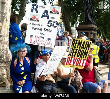 Londres, Royaume-Uni. 20 juillet 2019: Des manifestants anti Brexit se rassembler à la place du Parlement à la suite d'une marche à travers Londres. Il a été estimé que 1 millions de personnes venus de toutes les régions du pays Crédit: Bridget Catterall/Alamy Live News