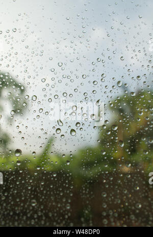 Gouttes sur la fenêtre avec les arbres en arrière-plan flou, jour de pluie Banque D'Images