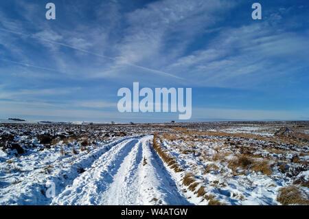 UK,Derbyshire, Peak District,Totley,Moss Moss Road à l'Ouest en direction du nord de l'arbre d'Air Tunnel Totley Banque D'Images