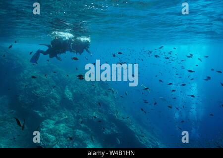 Mer Méditerranée plongée sous-marine, couple de plongeurs sur la surface de l'eau regarder bancs de poissons sous l'eau, Costa Brava, Espagne Banque D'Images