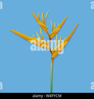 Bird of Paradise flower isolated on white background Banque D'Images