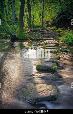 UK,South Yorkshire,Sheffield Rivelin Valley,Rivière,Stepping Stones,Rivelin Banque D'Images