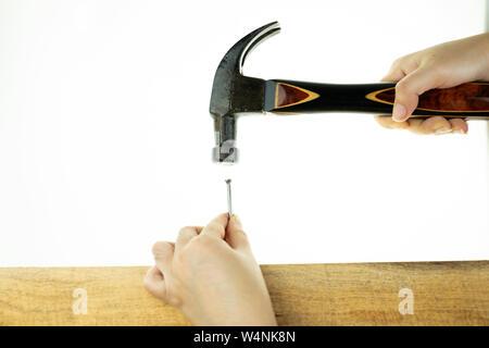 Main hoiding dame hammer hitting un clou sur terrain arboré à fond blanc Banque D'Images