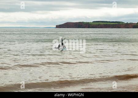 Trois jeunes filles, enfants ou adolescents / teen girl nageurs jouer sur un body board / service ou planche de surf sous un ciel gris sur la fin du printemps au début de l'été 24. La ville de Sidmouth dans le Devon England UK (110) Banque D'Images