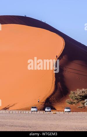 Dune 45, 170m d'une haute dune de sable rouge de Sossusvlei,, Namib-Naukluft National Park, Namibie Banque D'Images