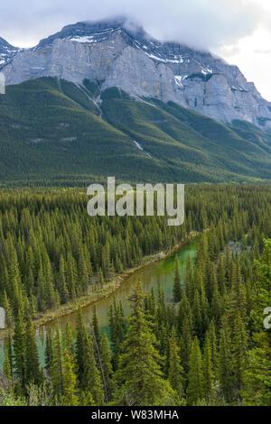 La vallée de la rivière de montagne - un soir de printemps vue sur la rivière Bow qui traverse des forêts de conifères denses à la base du mont Rundle, Parc national de Banff, Canada. Banque D'Images