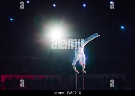 L'homme en acrobaties aériennes le cirque.