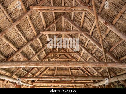 Vue de l'intérieur du toit de chaume chickee Seminole à Jupiter Inlet Lighthouse & Museum de Jupiter, comté de Palm Beach, en Floride. (USA) Banque D'Images