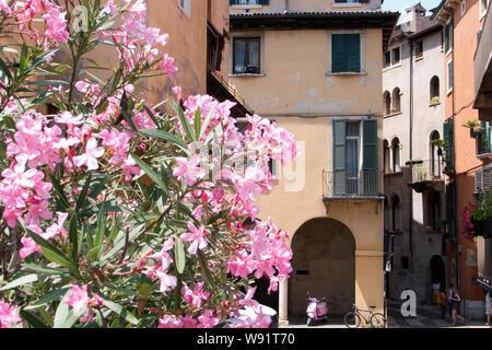 Ruelles et ruelles de la vieille ville de Vérone, Italie Banque D'Images