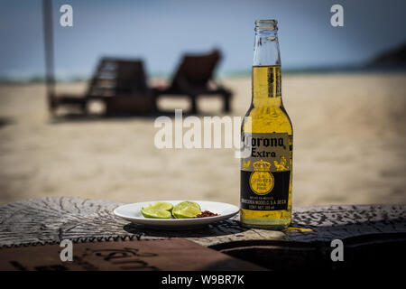 Seule bouteille de bière Corona sur une plage avec un côté de la chaux Banque D'Images