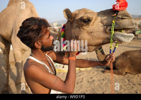 Rabari camel herder au chameau de Pushkar, Rajasthan équitable. La foire est la plus grande foire de chameaux en Inde. Banque D'Images