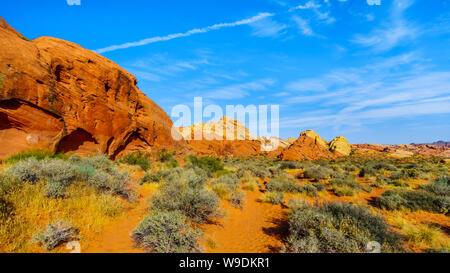 Montagnes de Grès colorés au lever du soleil sur le Rainbow Vista Trail dans le parc national de la Vallée de Feu au Nevada, USA