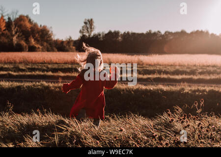Petite fille à l'extérieur à l'automne est titulaire de minuscules dans un champ d'exécution de citrouille Banque D'Images