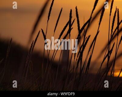 Cliché pris au coucher du soleil sur la plage de Talacre flintshire dans le Nord du Pays de Galles