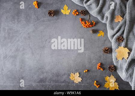 Composition d'automne. Pull, cônes, berry rowan et automne feuilles érable foncé sur fond de béton. Automne, hiver concept. Mise à plat, vue du dessus, copiez Banque D'Images