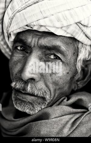 Vieux homme Rajasthani traditionnelle avec turban et moustache à Jaisalmer, Inde Banque D'Images