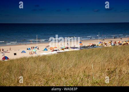 Paysage de dunes sur la plage d'Egmond, mer du Nord , la Hollande, Pays-Bas, 30057073 *** *** légende locale Banque D'Images