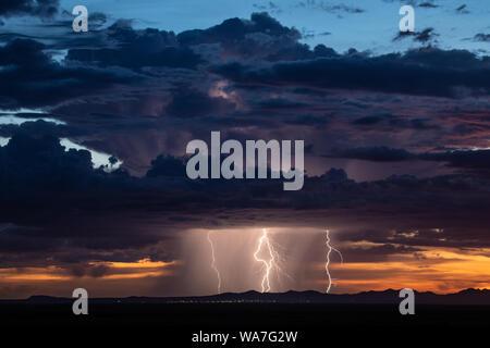 Les éclairs et la pluie tomber d'un orage de mousson d'été au coucher du soleil près de Columbus, New Mexico, USA Banque D'Images