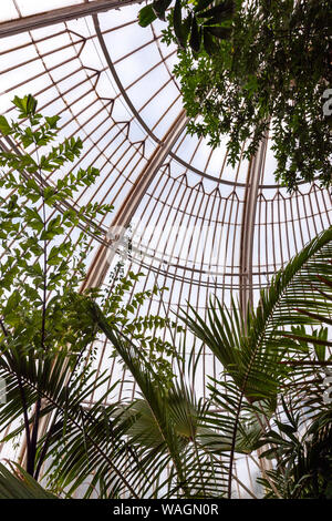 À l'intérieur de la Palm House, serre, par Charles Lanyon,à Royal Botanic Gardens, Kew, London Borough of Richmond upon Thames, Angleterre, Royaume-Uni,