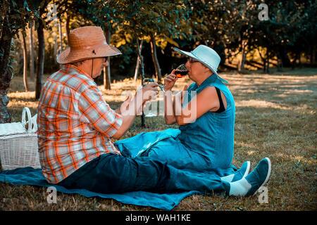 Senior couple drinking wine et avoir un grand temps ensemble sur un pique-nique dans le parc Banque D'Images